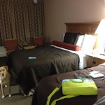 Foto de BEST WESTERN PLUS Saddleback I