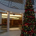Christmas tree looking towards main elevators