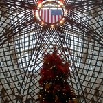 Interesting flag image showing above Christmas tree.