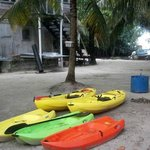Some of the new Kayaks available for hire