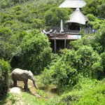 Photo de Lalibela Game Reserve