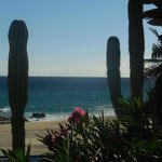Фотография Westin Resort & Spa Los Cabos
