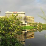 View of the Hilton from the nature walk along the lagoon