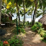 Photo de Manaltheeram Ayurveda Beach Village