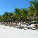 Foto de Catalonia Royal Tulum