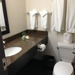 Photo de Holiday Inn Winnipeg Airport - Polo Park