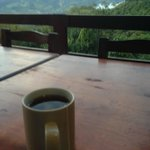 Welcome cup of tea loverlooking the view from the dining terrace
