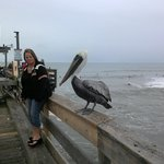 Days Inn Cocoa Beach Foto