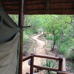 Foto de Sausage Tree Safari Camp
