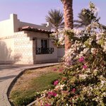 Φωτογραφία: Coral Beach Rotana Resort Hurghada