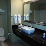 Φωτογραφία: BEST WESTERN PLUS Savannah Airport Inn & Suites