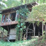 Φωτογραφία: Rio Magnolia Nature Lodge