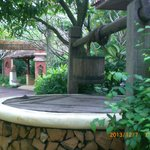 Foto Zazen Boutique Resort & Spa
