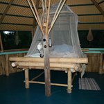 Photo de Tropical Treehouse