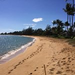 ภาพถ่ายของ Honu'ea International Hostel Kauai