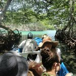 Long Island Tours - Private Day Tours