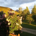 Blaeberry Mountain Lodge Foto