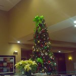 Foto van Holiday Inn & Suites Columbia - Airport
