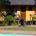 Foto van Thornhill Safari Lodge