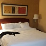 Courtyard by Marriott Dallas Addison Quorum Drive resmi
