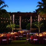 Great Lawn Social Event (86559677)