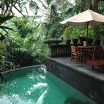 Bidadari Private Villas & Retreat - Ubud resmi
