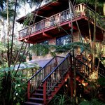 صورة فوتوغرافية لـ ‪Bamboo Orchid Cottage Bed & Breakfast‬