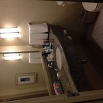 Φωτογραφία: Hilton Garden Inn Dallas / Richardson