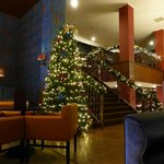 Lounge area with Christmas Tree