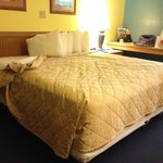 Foto Days Inn & Suites Davenport