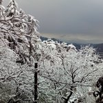View of valley from balcony during Snowfall on 22nd Dec, 13