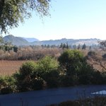 Φωτογραφία: Madrona Manor Wine Country Inn and Restaurant