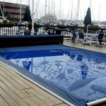 Constitution Marina's Bed & Breakfast Afloatの写真