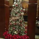 Christams tree in the lobby