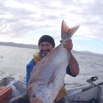 Cook Straight Private Fishing Charters
