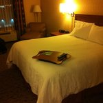 Hampton Inn And Suites Montreal照片