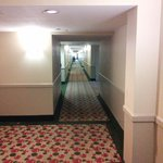 Foto de Holiday Inn Hotel & Suites Sawgrass Mills
