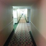 Foto van Holiday Inn Hotel & Suites Sawgrass Mills