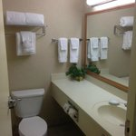 Foto BEST WESTERN Plus Evergreen Inn & Suites