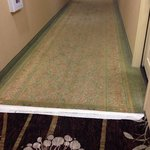 They replaced carpet down one hall but by looking at the tape on joint to old it has been some t