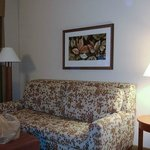 Hampton Inn & Suites Salemの写真