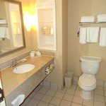 Φωτογραφία: Holiday Inn Express Tampa Fairgrounds