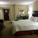 Photo de Hampton Inn Adel