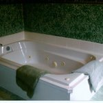En Suite Washroom - Jacuzzi