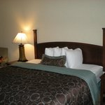 Foto de Staybridge Suites San Antonio Sea World