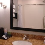 Holiday Inn Express Hotel & Suites Natchez South照片