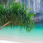 Foto de Krabi Nature View Guesthouse