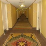 Hilton Garden Inn Myrtle Beach/Coastal Grand Mall Foto