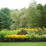 Picture of the beautiful grounds and flower garden that Rick planted