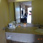 Φωτογραφία: Howard Johnson Inn Orlando International Airport